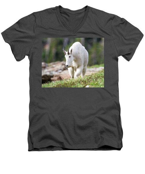 Men's V-Neck T-Shirt featuring the photograph High Country Mountain Goat by Jack Bell