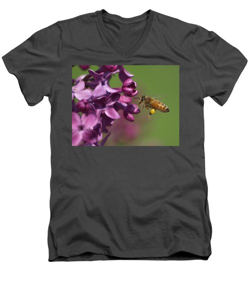 Honey Bee And Lilac Men's V-Neck T-Shirt