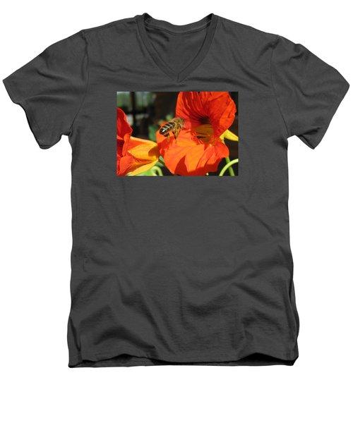 Honeybee Entering Nasturtium Men's V-Neck T-Shirt by Lucinda VanVleck