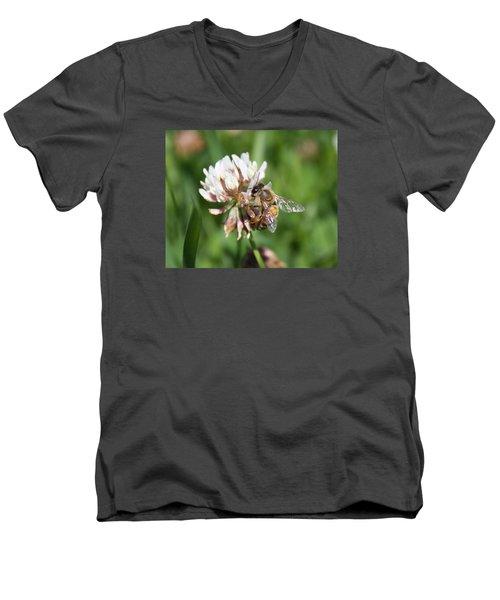 Honeybee On Clover Men's V-Neck T-Shirt by Lucinda VanVleck