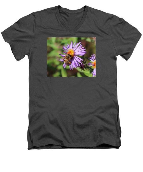 Honeybee On Purple Wild Aster Men's V-Neck T-Shirt by Lucinda VanVleck