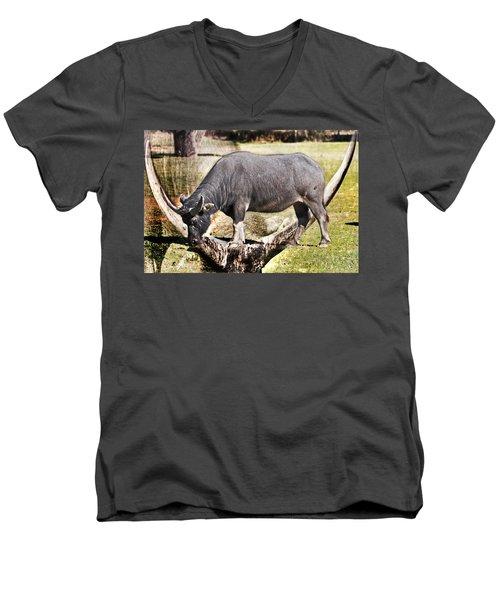 Horn Of A Buffallo Men's V-Neck T-Shirt