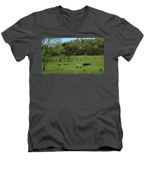 Horse 27 Men's V-Neck T-Shirt