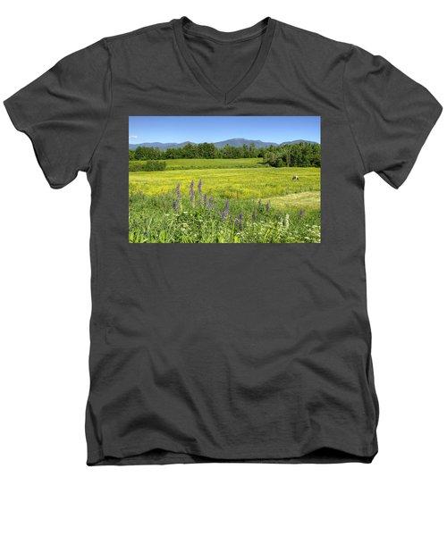Horse In Buttercup Field Men's V-Neck T-Shirt