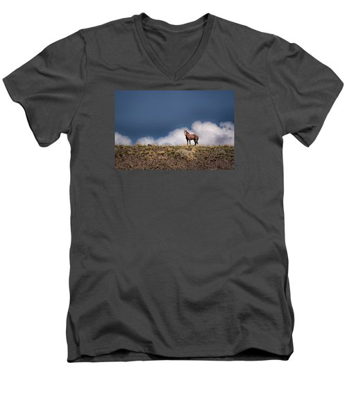 Men's V-Neck T-Shirt featuring the photograph Horse In The Clouds  by Janis Knight