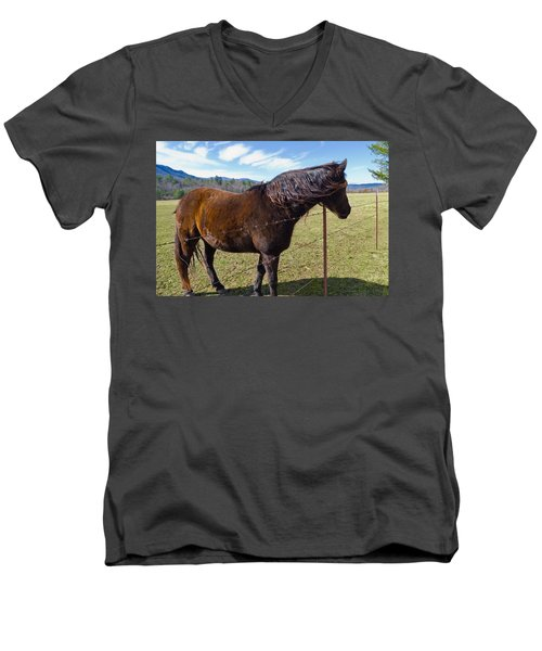 Horse Men's V-Neck T-Shirt by Melinda Fawver