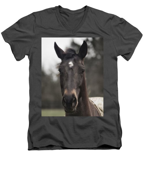 Horse With Gentle Eyes Men's V-Neck T-Shirt