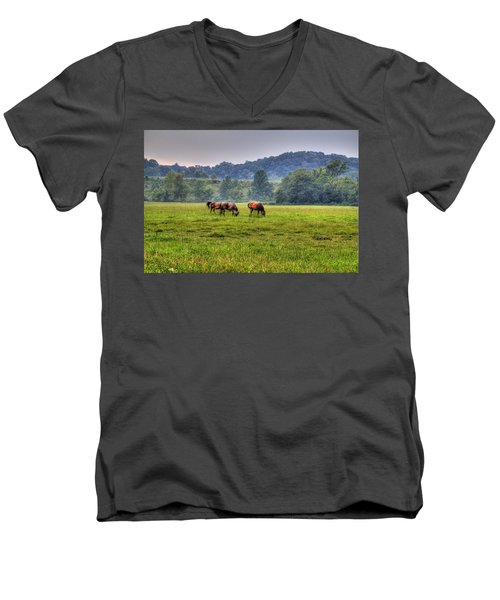 Horses In A Field 2 Men's V-Neck T-Shirt
