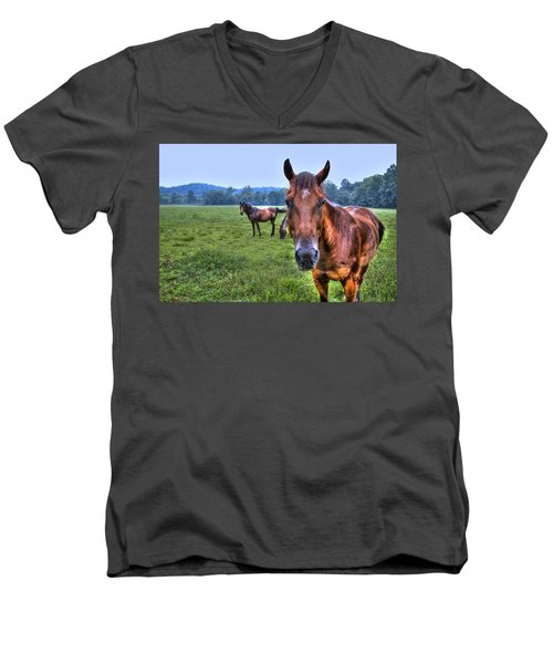 Horses In A Field Men's V-Neck T-Shirt
