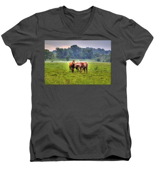 Horses Socialize Men's V-Neck T-Shirt