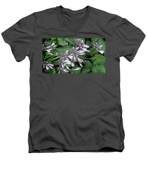 Hosta Ballet Men's V-Neck T-Shirt