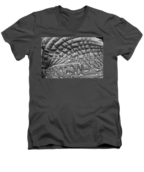 Hosta Leaf Men's V-Neck T-Shirt