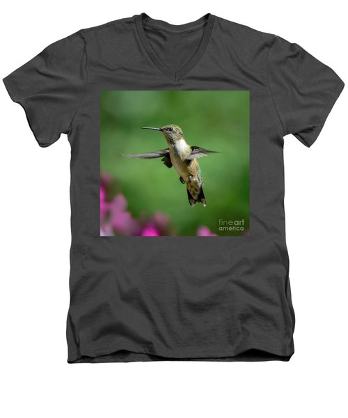 Hovering Hummer Men's V-Neck T-Shirt by Amy Porter