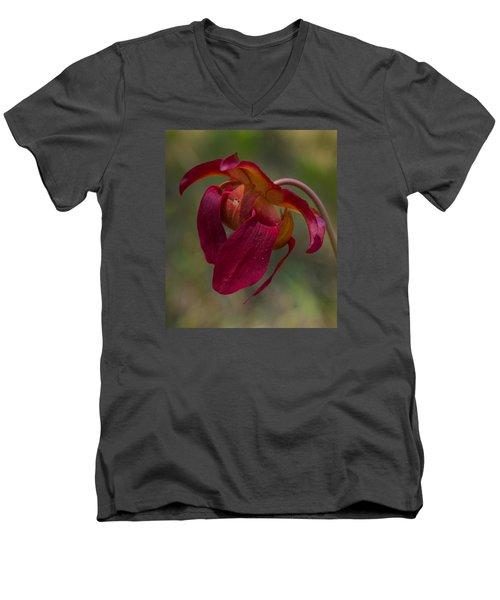 Hovering  Men's V-Neck T-Shirt