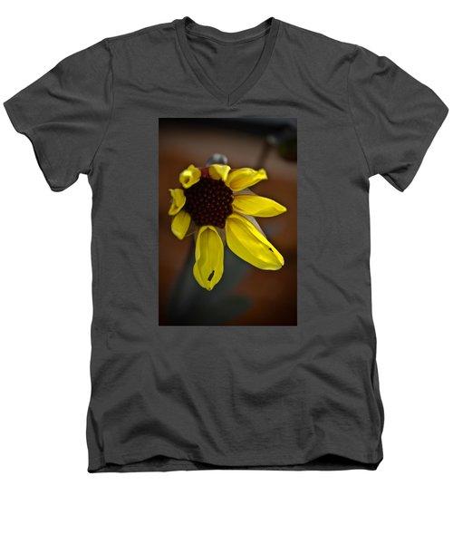 Huangdi Men's V-Neck T-Shirt by Joel Loftus