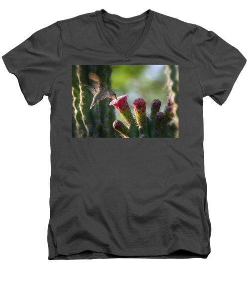 Hummingbird Breakfast Southwest Style  Men's V-Neck T-Shirt by Saija  Lehtonen