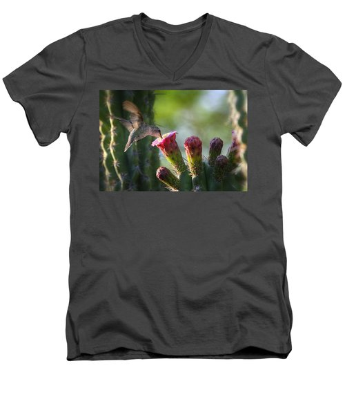 Hummingbird Breakfast Southwest Style  Men's V-Neck T-Shirt