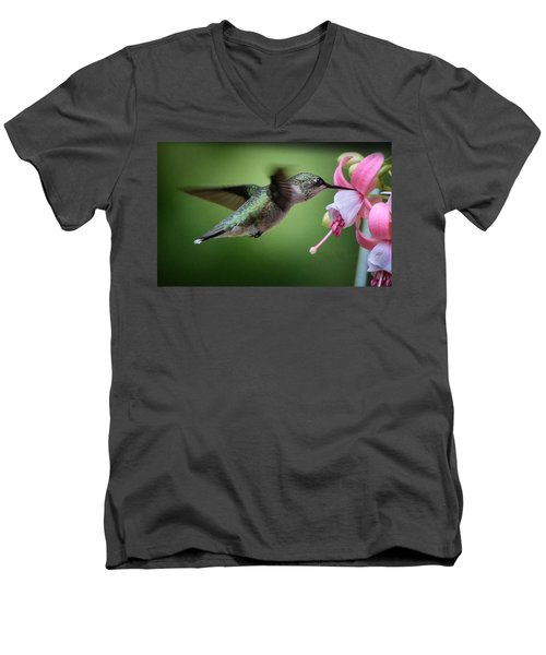 Hummingbird Carbs Men's V-Neck T-Shirt
