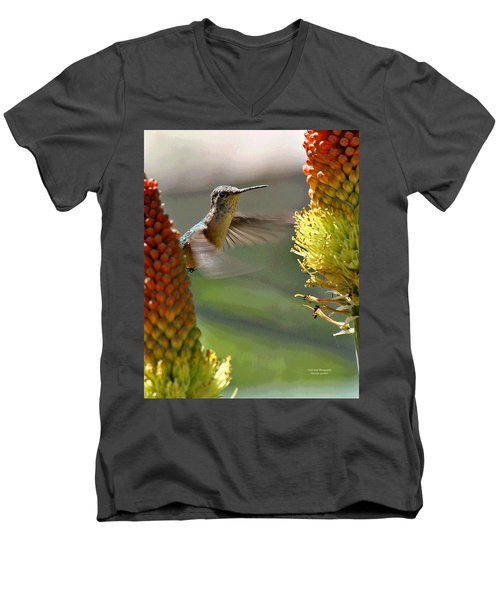 Hummingbird Feeding Men's V-Neck T-Shirt