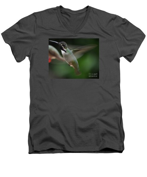 Men's V-Neck T-Shirt featuring the photograph Hummingbird Male Anna In Flight Over Perch by Jay Milo