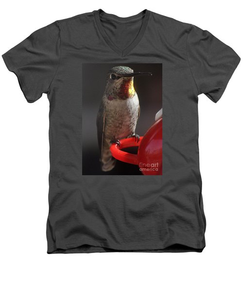 Men's V-Neck T-Shirt featuring the photograph Hummingbird Female Anna by Jay Milo