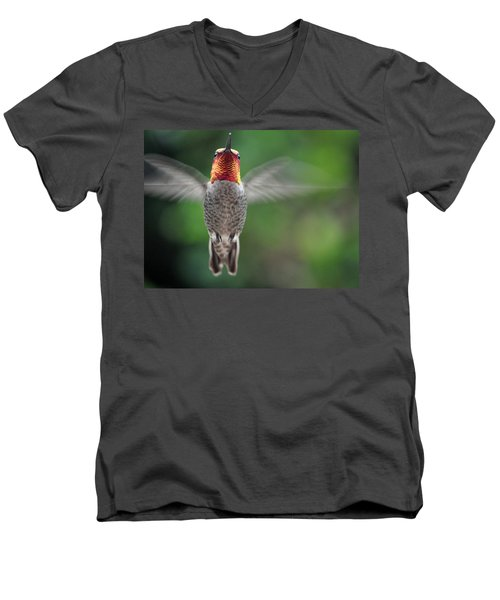 Men's V-Neck T-Shirt featuring the photograph Hummingbird In Flight Male Anna by Jay Milo