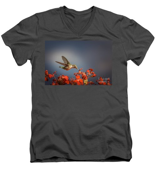 Hummingbird Or My Summer Visitor Men's V-Neck T-Shirt