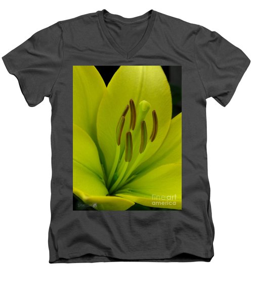 Men's V-Neck T-Shirt featuring the photograph Hybrid Lily Named Trebbiano by J McCombie