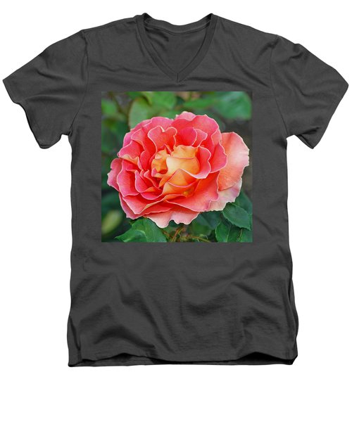 Hybrid Tea Rose  Men's V-Neck T-Shirt