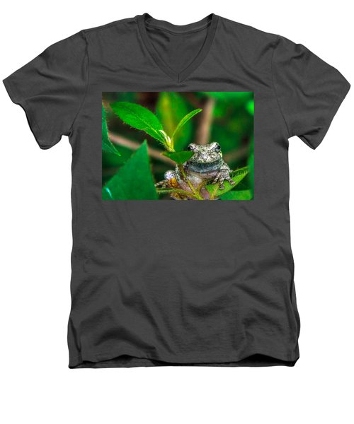 Hyla Versicolor Men's V-Neck T-Shirt