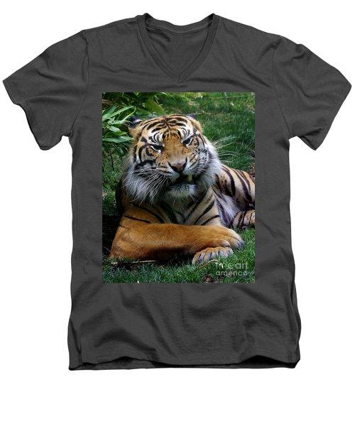 I Don't Always Men's V-Neck T-Shirt by Liz Masoner