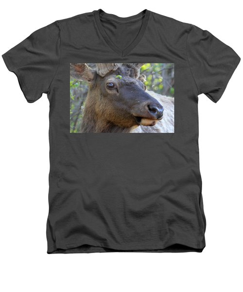 Men's V-Neck T-Shirt featuring the photograph I Have What On My Face? by Shane Bechler