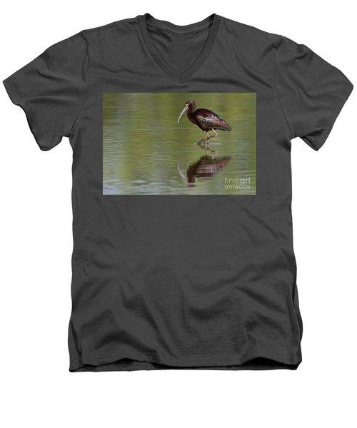Ibis Reflection Men's V-Neck T-Shirt