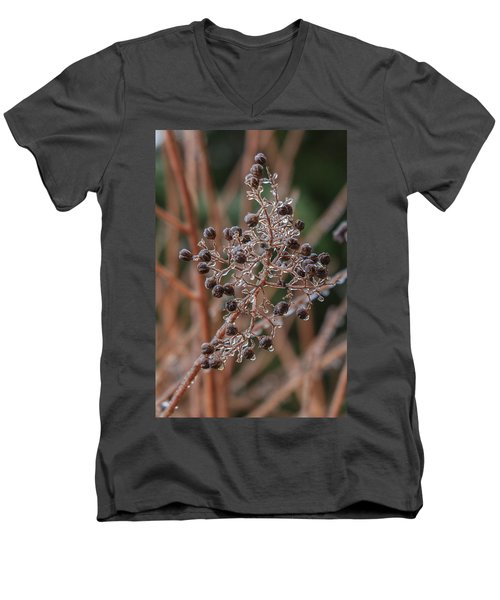 Ice On Berries Men's V-Neck T-Shirt