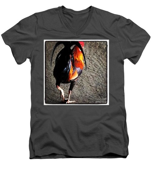Men's V-Neck T-Shirt featuring the photograph Iconic Kauai by Roselynne Broussard