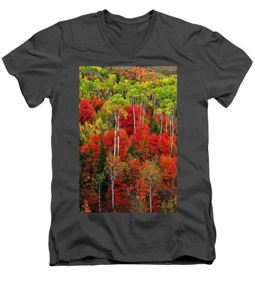 Idaho Autumn Men's V-Neck T-Shirt