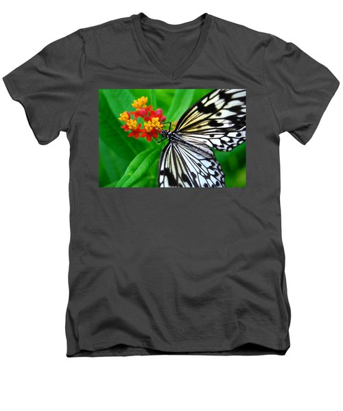 Idea Leuconoe Men's V-Neck T-Shirt by Carsten Reisinger