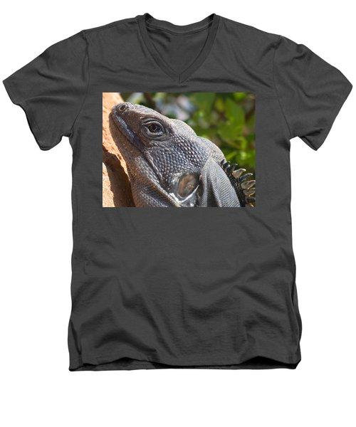 Iguana Closeup Men's V-Neck T-Shirt