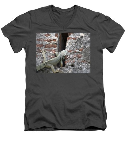 Men's V-Neck T-Shirt featuring the photograph Iguana by David S Reynolds