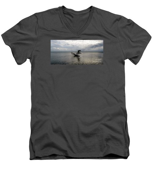 Ikebana Sunset Men's V-Neck T-Shirt