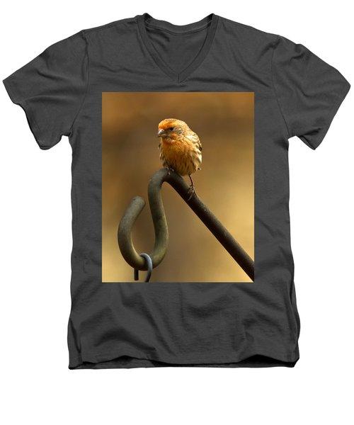 Men's V-Neck T-Shirt featuring the photograph I'm Orange by Robert L Jackson