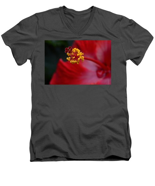 Men's V-Neck T-Shirt featuring the photograph In Red by Larry Bishop