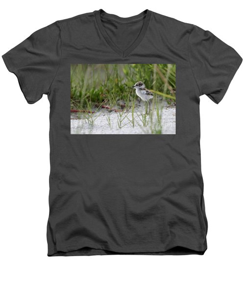 In The Grass - Wilson's Plover Chick Men's V-Neck T-Shirt