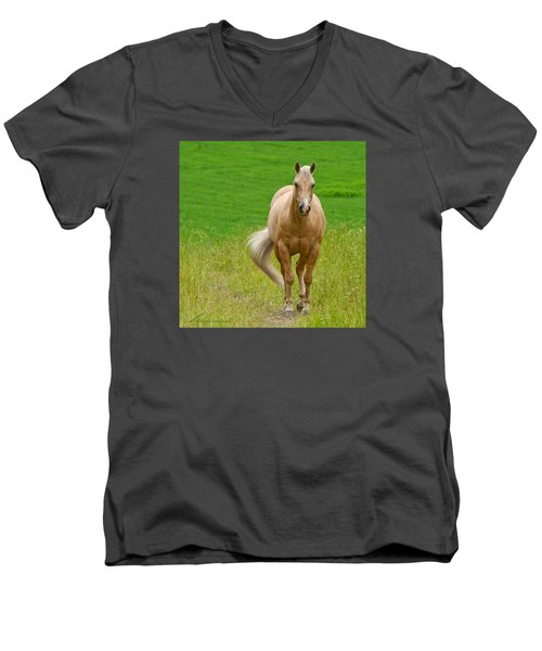 In The Meadow Men's V-Neck T-Shirt by Torbjorn Swenelius