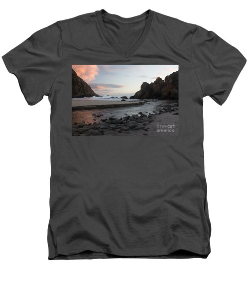 Men's V-Neck T-Shirt featuring the photograph In The Pink by Suzanne Luft