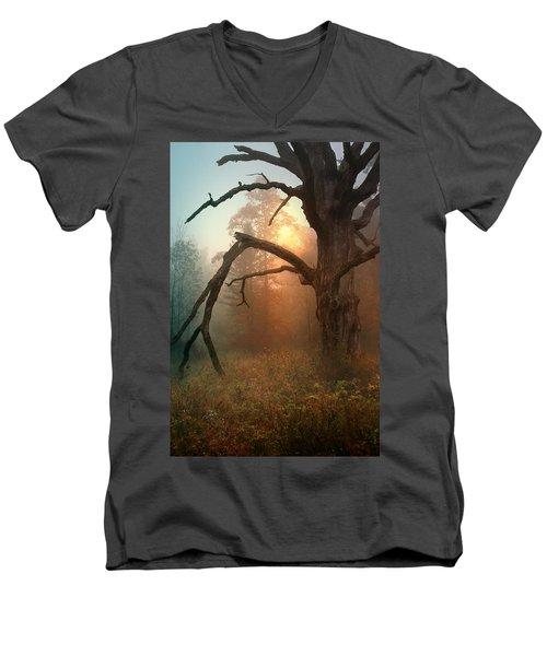 In The Stillness Men's V-Neck T-Shirt by Rob Blair