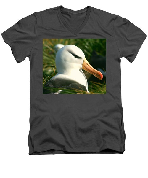 Men's V-Neck T-Shirt featuring the photograph In Waiting by Amanda Stadther