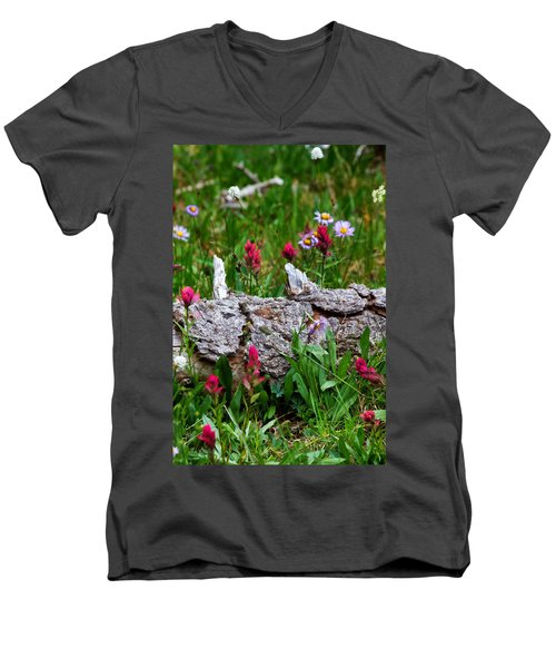 Men's V-Neck T-Shirt featuring the photograph Indian Paintbrush by Ronda Kimbrow