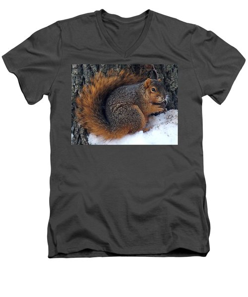 Indiana Squirrel In Winter With Nut Men's V-Neck T-Shirt