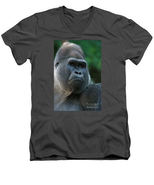 Men's V-Neck T-Shirt featuring the photograph Indifference by Judy Whitton